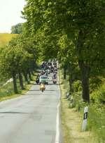 435 - Motorradgottesdienst Bad Doberan